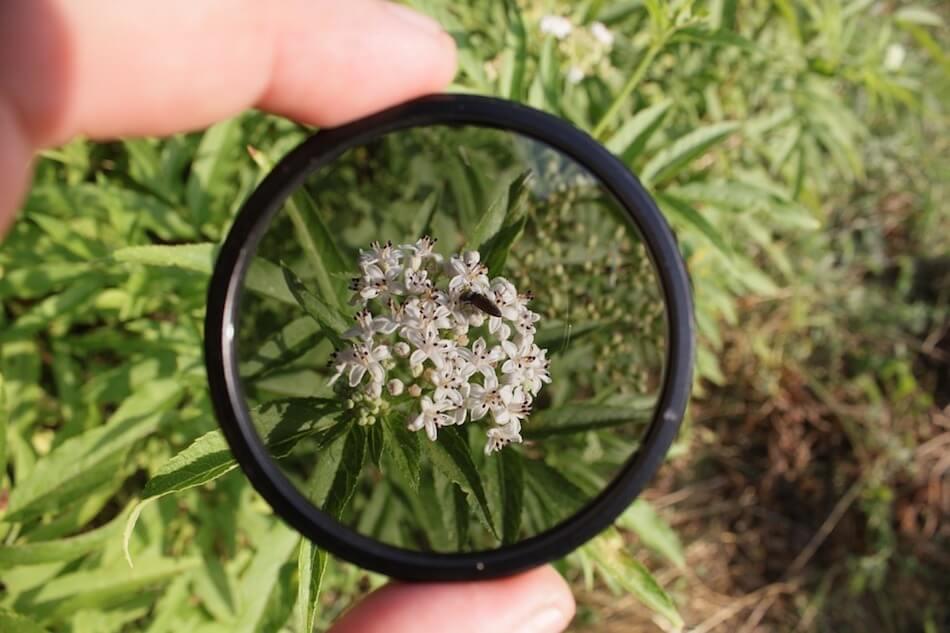 filtro-fotografico