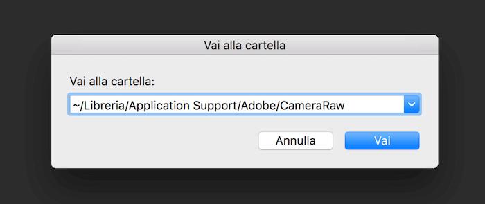 preset camera raw