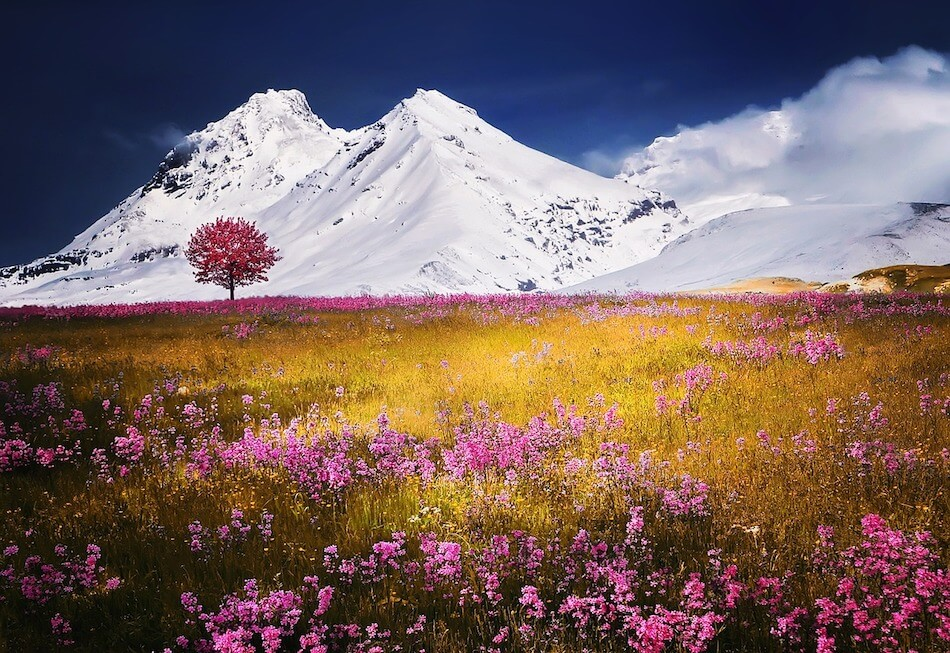 paesaggio-iperfocale
